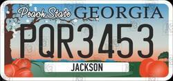US number of Georgia