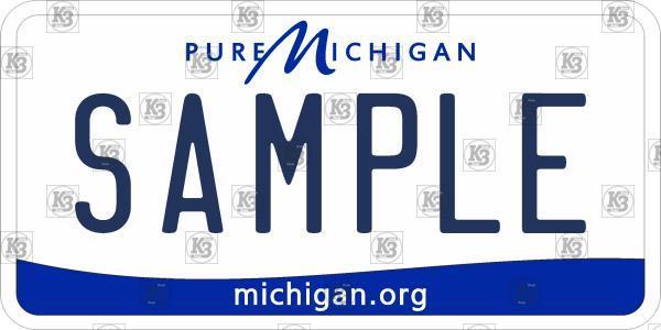 US Michigan Number